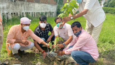 People were made aware to keep the environment clean by planting saplings